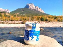 Yogur natural de Saravillo